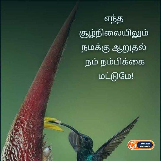 nambikai mattum - best nambikai image in tamil