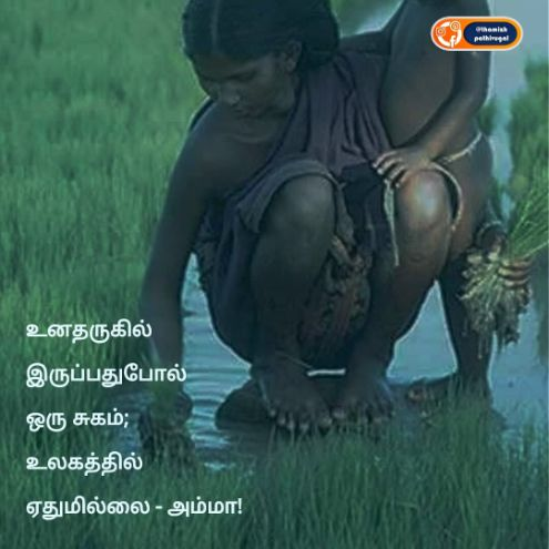 ulagathil athuvum ilai amma - best mother quotes in tamil